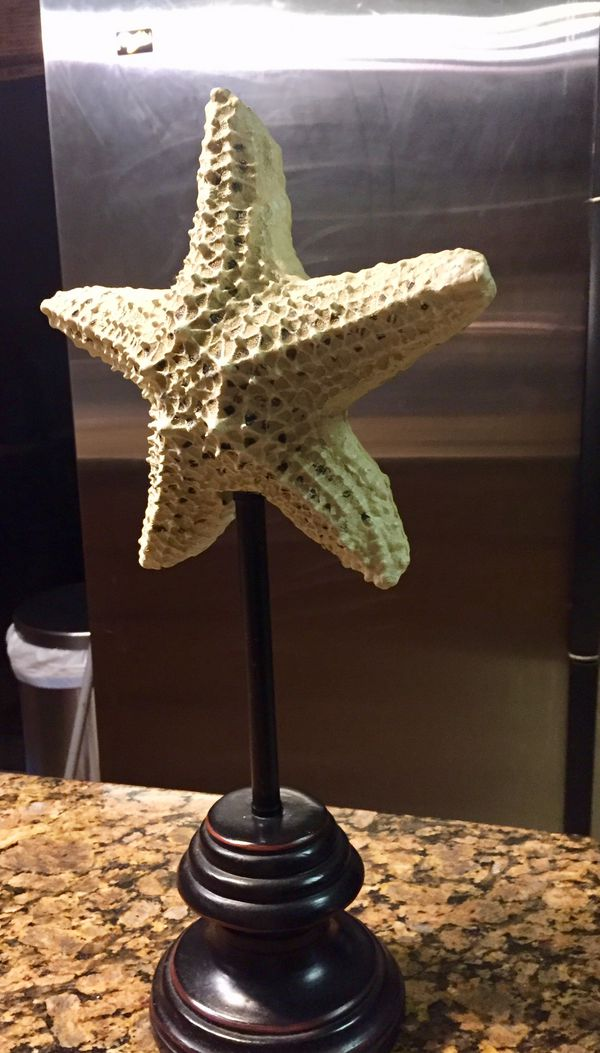Starfish decor/ solid piece