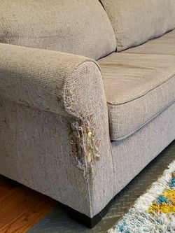 Slightly Damaged Pull Out Sofa for Sale in Livonia,  MI
