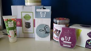 Scentsy wax warmers buddies and more for Sale in Palm Harbor, FL