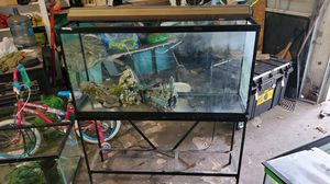 65 gallon fish tank for Sale in Houston, TX