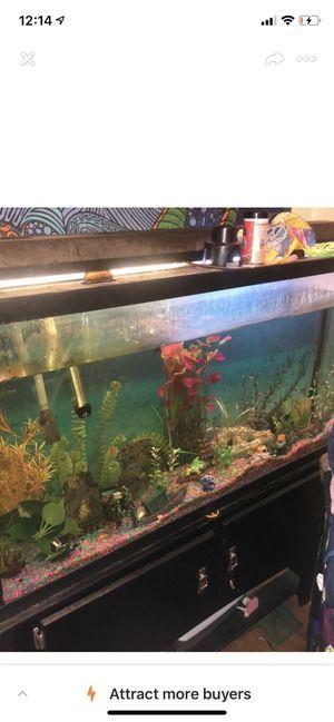 75 gallon fish tank with 2 door black stand for Sale in Roanoke, VA