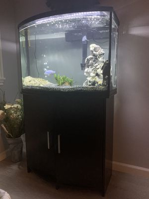 36 Gallon Bow-front Fish Tank for Sale in Seattle, WA