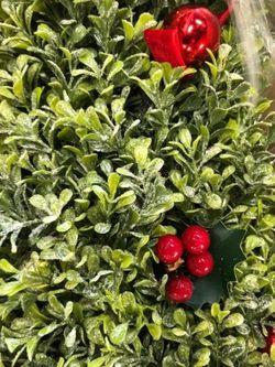"""36"""" Glistening Boxwood Topiary for Sale in Pompano Beach,  FL"""