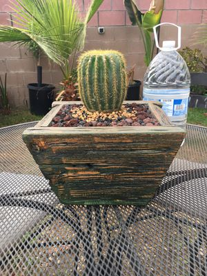 Rustic Wood Vase with Cactus for Sale in Fontana, CA