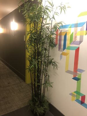 Fake bamboo plant (6.5 feet tall) for Sale in Seattle, WA