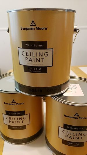 Ceiling Paint - Camouflage for Sale in Normal, IL