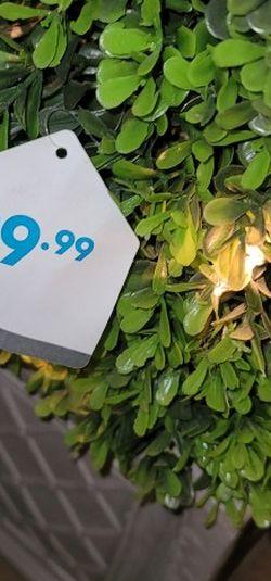 Topiary for Sale in Las Vegas,  NV