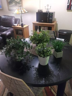 4 ARTIFICIAL PLANTS SO REAL LOOKING - YOU'LL WANT TO WATER THEM for Sale in Lakewood, CO