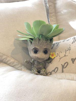 Baby groot planter succulent arrangement for Sale in Westminster, CA