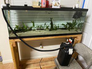 Fluval 306 fish tank aquarium filter for Sale in Sacramento, CA