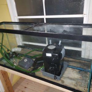 Fish tank for Sale in Ionia, MI