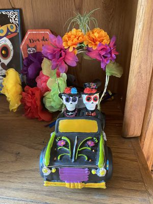 Halloween indoor outdoors decoration plants flowers dia de los muretos day of the day sugar skull black air plant vintage car for Sale in Covina, CA