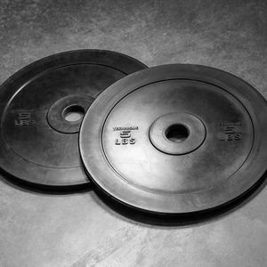 Rep Fitness Extra Firm Technique Bumper Plates 5 Lbs Pair for Sale in Los Altos, CA