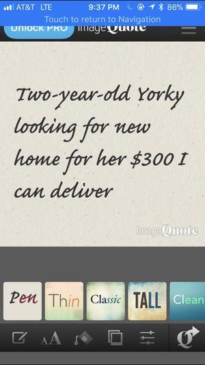 Must go immediately for Sale in Washington, DC