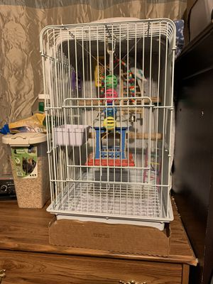 2 parakeets, the cage with stand and food for Sale in Quincy, IL
