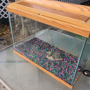 Fish Tank Breeding Fish Included! for Sale in Rancho Cucamonga, CA