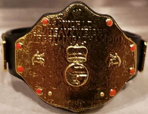 New WWE WORLD HEAVYWEIGHT CHAMPIONSHIP BELT (For ActionFigures). for Sale in Apopka, FL