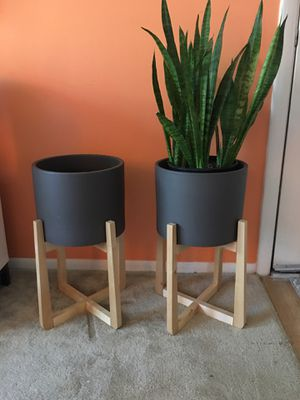 Modern planter with wood base for Sale in Seminole, FL