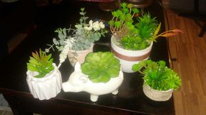 Artificial Succulents $5-$15 Each Or Buy Multiple For Discounted Bundle Price for Sale in Mesa, AZ