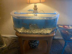 Fish tank and fish for Sale in Las Vegas, NV
