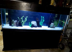 150 gallon fish tank/aquarium for Sale in Corona, CA