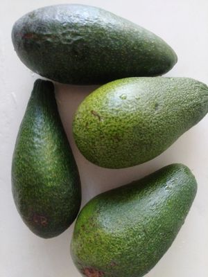 Local Avocados in Lindsay for Sale in Hayward, CA