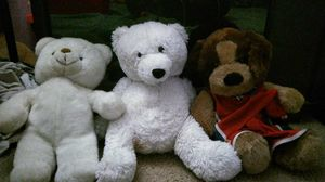 Stuffed animals for kids bundle includes soft white bear,coca cola bear, and NBA dog for Sale in Del Mar, CA