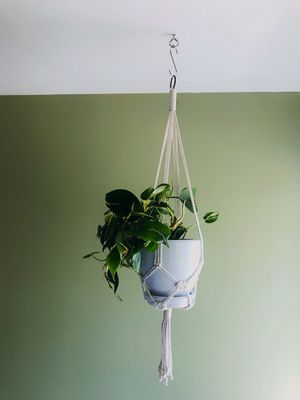 Simple Josephine knot Macrame Plant Hanger. for Sale in Lakeside, CA