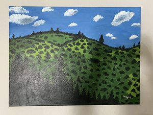 Wall Portrait for Sale in Denver, CO
