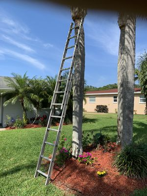 16 foot extension ladder in excellent condition oh for Sale in Palm Harbor, FL