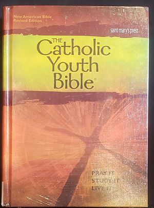 The Catholic youth Bible for Sale in Lynn, MA