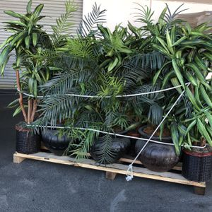 Fake Plants for Sale in Anaheim, CA