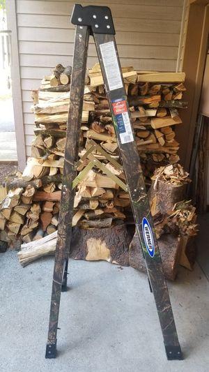 Werner New 6ft Fiberglass Professional Ladder for Sale in Beaverton, OR