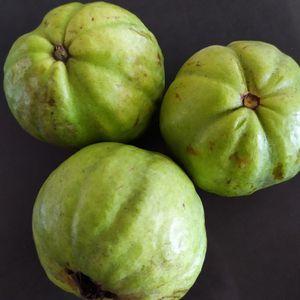 Fresh White Guava Guayaba Organic 5 Lbs for Sale in Rolling Hills Estates, CA