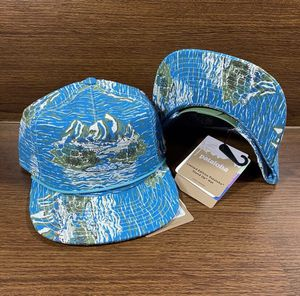 Patagonia Pataloha Limited Edition SnapBack Hat Cap for Sale in Las Vegas, NV