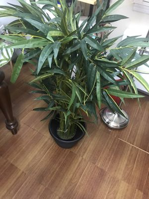 Imitation plant for Sale in Queens, NY