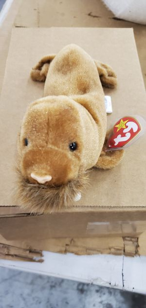 Beanie baby for Sale in Denver, CO