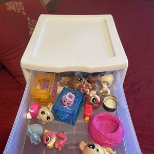 Shopkins/hachimals With Storage Container for Sale in El Cajon, CA