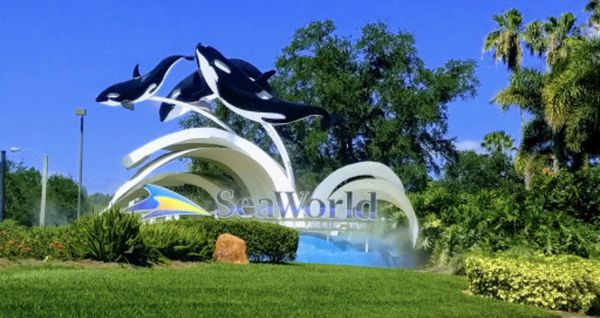Seaworld, Aquatica or Busch Gardens tickets