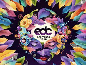 EDC Las Vegas 2020 for Sale in Corona, CA