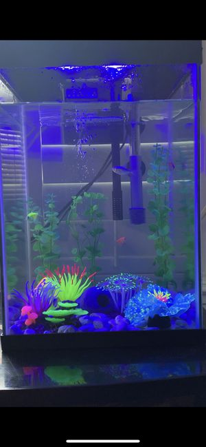 Top Fin 10 Gallon Square fish tank with 4 Glo fish included and decor for Sale in Hayward, CA