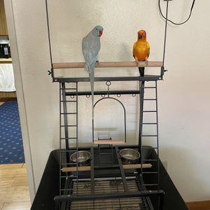 Small Parrot Playstand /Cage for Sale in Irwindale, CA