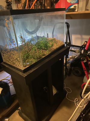 30 Gallon Fish Tank/ aquarium for Sale in Woodbridge, VA