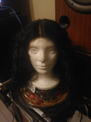 A long curly wig a half wig $25 for Sale in Phoenix, AZ