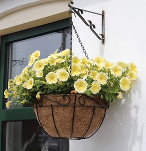 "10"", 12"", 14"" hanging planter basket with coco coir liner, new for Sale in Ontario, CA"
