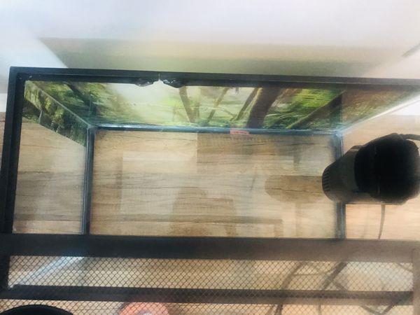 10 gallon turtle aquarium including lamp,filter and food