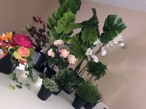 13 fake plants for Sale in Apple Valley, MN
