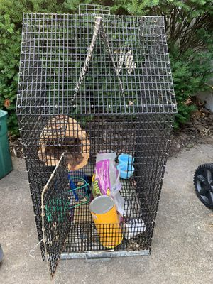 Bird / animal cage with bunch of extras for Sale in O'Fallon, MO
