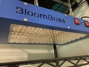 Bloom boss fusion 600 LED grow light for Sale in Kernersville, NC