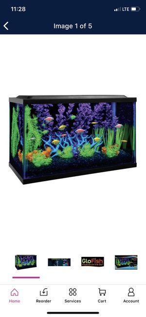 GloFish 10-Gallon Aquarium Kit with Filter, Conditioner and Fish Food for Sale in Phoenix, AZ
